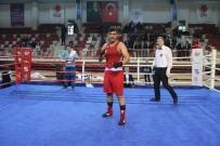 VEFA SALMAN - Yalova'da Ringin Genç Şampiyonları Belli Oldu