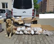 DİYARBAKIR VALİLİĞİ - Diyarbakır'daki Uygulama Noktalarında, Aranan 16 Bin 266 Kişi Yakalandı