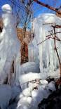 Sınır Boylarını Buz Kesti