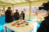 YABANCI TURİST - TRT Haber Darende'yi Tanıtacak