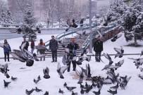 SÜLEYMAN YıLMAZ - İlkadım Belediyesi Sokak Hayvanlarını Unutmadı
