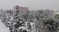 KAR ÖRTÜSÜ - Karla Gelen Güzellik Ve Çile