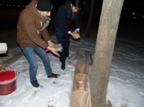 SOKAK HAYVANI - AK Parti'nin 'Sessiz Dostlarımız İçin Lokanta Projesi' İlgi Görüyor