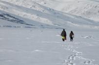 Çıldır Gölü Üzerinde Balıkçılarla Ve Kurtlar Bir Arada