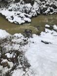 ÖMER AYDıN - Giresun'da Trafik Kazası Açıklaması 1 Ölü, 2 Yaralı