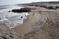 MUSTAFA ÖZTÜRK - Haberi alan sahile koştu!