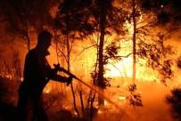 ORMAN YANGıNLARı - Aydın'da Orman Yangını