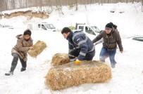 ORMANA - Karda Yaban Hayvanlarına Yiyecek Bırakıldı