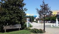 İSİM DEĞİŞİKLİĞİ - Salihli'de 2 Meydana Yeni İsim Verildi