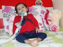 İLAÇ FİRMASI - SMA Hastası Minik Zeynep'in Ailesi Yardım Bekliyor