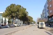 Atatürk Caddesi Prestijine Kavuşuyor