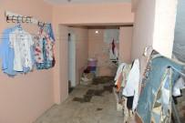 HAYVAN BAKIM EVİ - Çöp Evdeki Kedilere Belediye Şefkati
