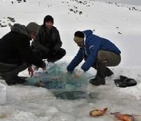 'Ekmeğimizi buzun altından çıkartıyoruz'