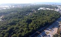 FUTBOL SAHASI - Muratpaşa Belediyesi'nden Obruk Ormanı İmar Planı Çalışması