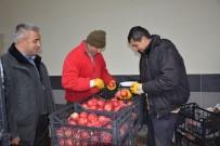 DOLULUK ORANI - Rusya'ya Elma İhracatı Başladı