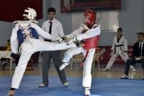 AYDIN DOĞAN - Anadolu Yıldızlar Ligi Taekwondo Grup Müsabakaları Gümüşhane'de Devam Ediyor