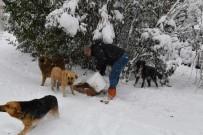 BAHÇELİEVLER BELEDİYESİ - Bahçelievler'de Kış Çalışmaları