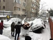 İPEKBÖCEĞİ - Bursa'da Yoğun Kar Asırlık Ağacı Yıktı, Tramvay Seferleri Güçlükle Yapılabiliyor...(ÖZEL HABER)