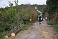 Fırtına Elektrik Telleri Koparıp Ağaçları Devirdi