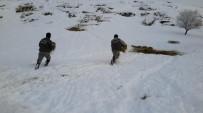KAR ÖRTÜSÜ - Konya'da Anadolu Yaban Koyunlarına Yem Takviyesi