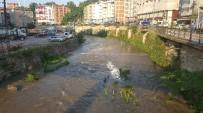 Kumru'da Elekçi Irmağı Islah Ediliyor
