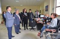 Prof. Dr. Sibel Canbaz Kabay Açıklaması Türkiye'de 50 Bin MS Hastası Var