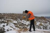 CEVIZLI - Uçhisar Belediyesi, Kuşlar İçin Doğaya Yem Bırakıyor
