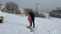 Akçakoca'da Sokak Hayvanlarına Yem Bırakıldı