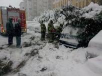Bandırma'da Kar Yağışı 30 Ağacı Yerle Bir Etti