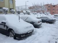 Sakarya'da Kar Kalınlığı 25 Santimetreye Ulaştı