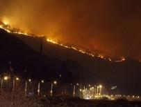 TRABZON VALİSİ - Sürmene'deki orman yangını kontrol altına alındı