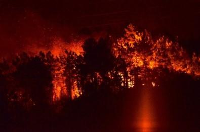 Trabzon'da ormanlık alanda yangın
