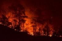 ORMAN YANGINI - Trabzon Valisi Yücel Yavuz Açıklaması 'Yangında 15-20 Hektar Kadar Bir Alanın Etkilendiğini Düşünüyoruz'
