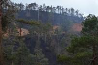 ORMAN YANGINI - Yangının Boyutu Gün Ağarınca Ortaya Çıktı