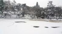 DONMA TEHLİKESİ - Yıldız Parkı'nda Gölet Buz Tuttu