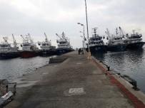 Balıkçı Gemileri Poyraz Nedeniyle Edremit'e Demirledi.