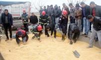 KURTARMA EKİBİ - Kazada kopan kolu bulmak için zamanla yarıştılar