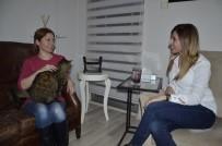 PSIKOLOG - Kedi Fobisine Kedili Terapi