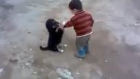 YAVRU KÖPEK - Minik Çocukla Yavru Köpeğin Kavgası