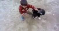 YAVRU KÖPEK - Minik Çocukla Yavru Köpeğin Müthiş Kavgası