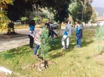 MESLEK LİSESİ - Öğrenciler Çam Ağaçlarına Kendi İsimlerini Verdi