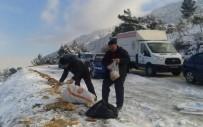 FARUK ÇELİK - Şehzadeler Sokak Hayvanlarını Unutmadı