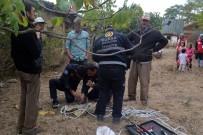 YAVRU KEDİ - Çukura Düşen Kedi Öğrenciler Sayesinde Kurtarıldı