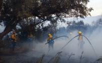SAN FRANCISCO - ABD'de Yangın Açıklaması 10 Ölü