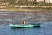 BEYŞEHIR GÖLÜ - Beyşehir Gölü Kıyılarında Sular Çekiliyor