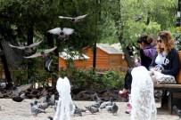 SAKARYA CADDESİ - Çankaya'da Ücretsiz İnternet Hizmetinden 58 Bin 245 Kişi Yararlandı