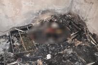 CİNAYET ZANLISI - Bıçaklandıktan Sonra Yakılmıştı