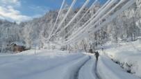 Doğu Karadeniz'de Elektrik Nakil Hatlarında Buzlanma Ve Kar Yükünden Ötürü Artık Elektrik Kesintisi Yaşanmayacak