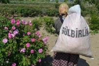 Türkiye Ekonomisine 40 Milyon Avroluk 'Gül'düren Katkı