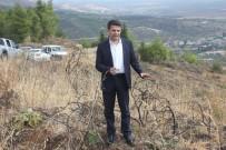 ORMAN İŞLETME MÜDÜRÜ - Yanan 25 Hektarlık Alana 26 Bin Fidan Dikildi